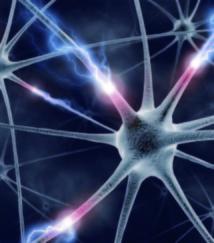 Une mutation génétique protégerait d'Alzheimer