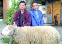 Diffusion ce soir sur 2M du téléfilm «Mabrouk Al Aid»: La rançon d'un sacrifice