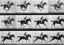 L'histoire du cinéma : Propagation de l'invention et premiers avatars
