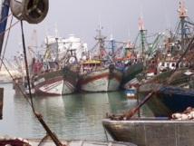 Les débarquements progressent de 48% à fin juin : La pêche côtière et artisanale a le vent en poupe
