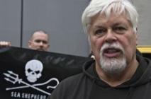 Interpol aux trousses d'un ancien membre de Greenpeace : Mandat d'arrêt à l'encontre de l'écologiste Watson