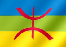 Le mouvement amazigh monte au créneau : La loi organique vivement attendue