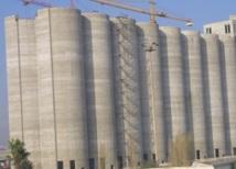 Le blé, l'orge, les pois chiches et les petits pois concassés concernés : Trop chères céréales et légumineuses !