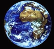 La masse des organismes vivants sur Terre inférieure d'un tiers aux prévisions