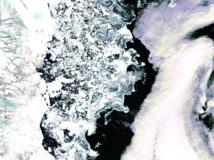 La glace d'été en Antartique aura disparu d'ici 4 ans