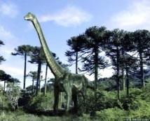 Disparition des dinosaures: Une histoire tuée dans l'œuf