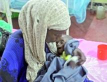 Comment vaincre les famines ?