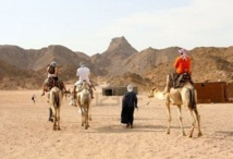 Un secteur en manque de visibilité : Le tourisme de désert en mal d'un plan Marshall
