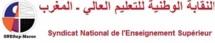 SNESup et Mouvement du 20 février montent au créneau : La politique de Lahcen Daoudi dénoncée