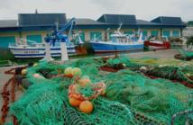 Pêche et aquaculture: comment nourrir les hommes en sauvant les poissons ?