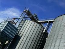 En raison de la faiblesse de la production nationale : Les importations de blé français appelées à augmenter