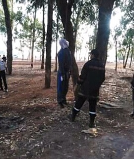 Découverte  du cadavre  d'un Pacha  de Khouribga pendu à un arbre
