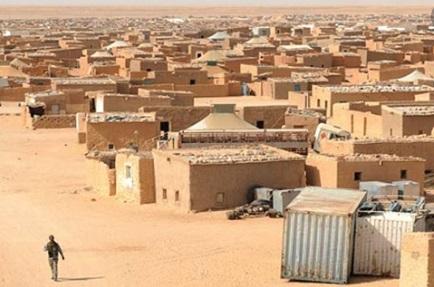 Un millier d'ONG sahraouies dénoncent les violations des droits de l'Homme dans les camps de Tindouf