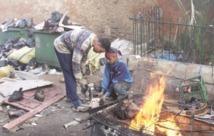 Appel du Syndicat national des professionnels du transport des viandes : Des abattoirs opérationnels le jour de l'Aïd