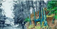 """""""Racines"""", l'ultime tableau  de Van Gogh, livre son secret"""