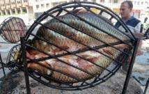La table irakienne renoue avec sa vieille maîtresse, la carpe grillée