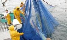 Accord de pêche Maroc-UE : Reprise des négociations à Rabat
