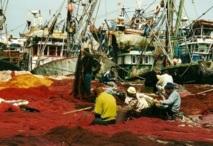Négociations de pêche entre Rabat et l'UE : Le premier round dévoile les divergences des parties