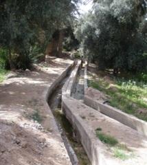 A cause de la surexploitation de la nappe phréatique : Prémices d'une pénurie d'eau dans les régions oasiennes