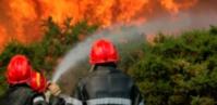 L'incendie de la forêt domaniale de Ghiraya maîtrisé