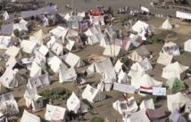 En dépit des protestations : La Constitution égyptienne examinée en hâte