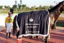 Hippisme : Le cheval Mayar remporte le GP Feu SM Mohammed V