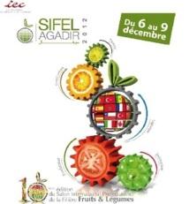 Sifel Agadir : Consolider les acquis et conquérir de nouveaux marchés