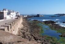 Conseil administratif de l'AREF : Cinq syndicats de l'enseignement  appellent à une grève à Essaouira