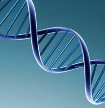 La génétique peut-elle expliquer  nos opinions politiques?