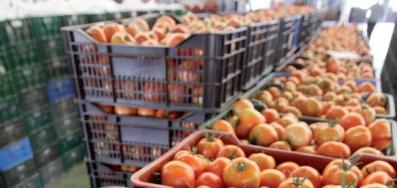 Hausse de la valeur des exportations agricoles durant la campagne 2019-2020