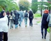 Reportage : A l'université, les étudiants sont en quête d'une formation en adéquation avec le marché de l'emploi