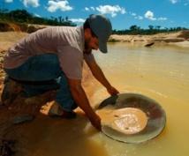 Les termites, de nouveaux alliés pour les chercheurs d'or