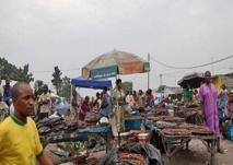Congo Brazzaville : Quel bilan après l'accession à l'initiative pays pauvres très endettés ?