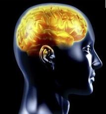 Aidez votre cerveau à tenir vos bonnes résolutions