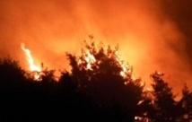 L'Australie face à des dizaines de feux de brousse