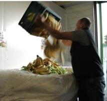 La moitié de la nourriture mondiale part à la poubelle