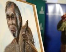 Les mystères de l'évolution du corps humain