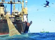 Madrid met la pression pour parvenir à un nouvel accord de pêche avec le Maroc : Nouveau round de négociations avec l'UE à Rabat