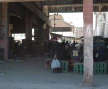 Le marché de gros des volailles de Casablanca restera en place