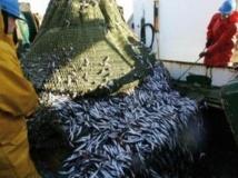 5ème round des négociations  de pêche à Rabat