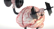 Faire du sport améliore les performances du cerveau