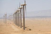 Le plus important projet éolien en Afrique démarre ses travaux à Tarfaya