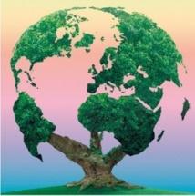 Débat sur la protection de l'environnement à Khénifra