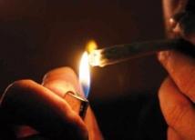 Cannabis : un risque accru d'AVC chez les fumeurs