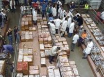 Hausse des exportations des produits de la mer