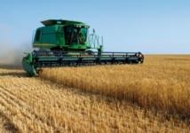 Les stocks des céréales ont baissé de 16%  à fin 2012