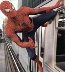 Une araignée pourrait réellement arrêter un train avec sa soie