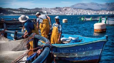 La fièvre migratoire s'empare des patrons de la pêche artisanale