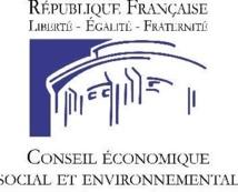 Adoption du  rapport du CESE