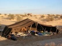 Mhamid El Ghizlane accueille les nomades du monde